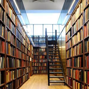 Библиотеки Сланцев